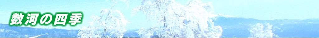 数河の四季
